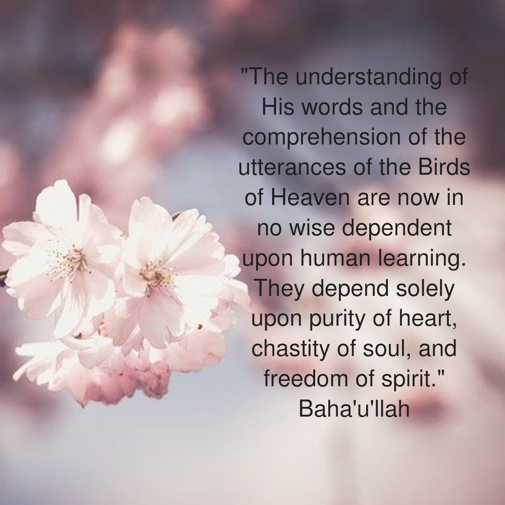 The Understanding of His Words and the Comprehension of the Utterances